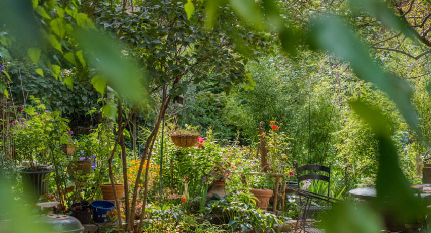 El Sol Brillante Garden
